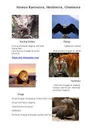 Foto hd elang vs harimau / wallpaper elang hd for android apk download.harimau adalah hewan yang tergolong dalam filum chordata (mempunyai saraf tulang belakang), subfilum vertebrata (bertulang belakang), kelas mamalia (berdarah panas, berbulu dengan kelenjar susu), pemakan daging (karnivora), keluarga felidae (kucing), genus panthera, dan. Binatang