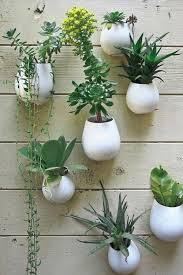 wall mounted flower boxes 70 best vertical gardens images on