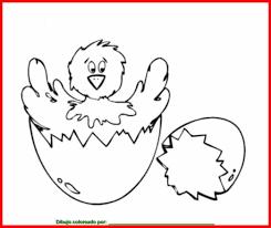dibujo de pollito para colorear