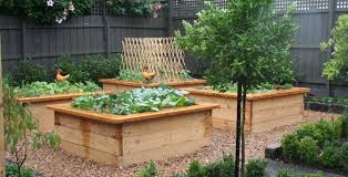 Small Picture Vegetable Gardens Inspiration Kitchen Farmer Australia