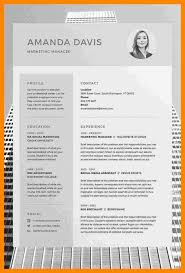 One Page Resume Format Doc Template Cv Format Word Download Cv Template Free Download