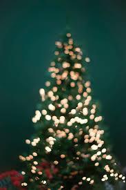 Christmas Christmas Tree Lights Why I Keep My Christmas Tree Lights On All Year Round