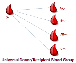 Universal Blood Type Chart Blood Types Chart Things You Must Know About Blood Group