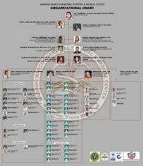 Mha Organisation Chart Mariano Marcos Memorial Hospital And Medical Ctr
