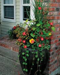 A Gallery Of Beautiful Container Garden IdeasContainer Garden Ideas Full Sun
