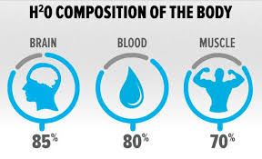 water composition