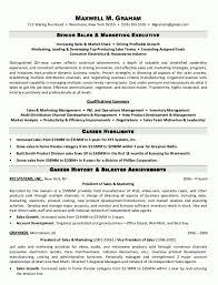 Marketing Manager Resume Summary Cv Brand Product Marketing Manager