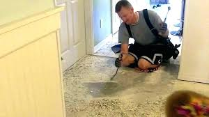floor adhesive remover concrete tile glue remover photo 1 of 9 removing mortar from my concrete floor adhesive remover