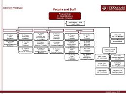 Texas A M University At Qatar Organizational Chart