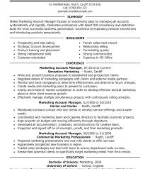 Account Manager Job Description For Resume Account Manager Resume ...