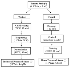 Tomato Sauce Production Flow Chart 33 Unbiased Flow Chart Of Tomato Ketchup