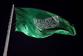 السعودية.. عقوبات بالسجن 233 عاما لـ24 متهما في قضية غسل أموال مدوّية - RT  Arabic