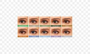 Acuvue Contact Colors Chart Contact Lenses Eye Color Bausch Lomb Png 500x500px