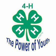 Image result for 4-h clipart