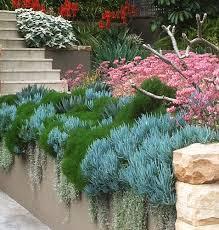 garden design. Modren Design Throughout Garden Design D