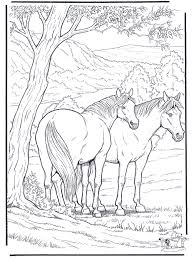 Free Coloring Pages For Adults Animals Coloring Pages Horses