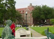 florida state university admissions essay proper way to write an florida state university admissions essay a essay