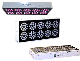 Best Cheap Led Grow Light 2015 Led Grow Lights An Ultimate Guide For Indoor Growers