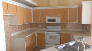 kitchen cabinets in orlando florida tryideas co