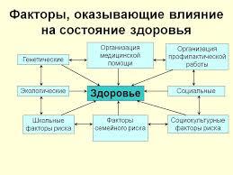 Реферат по географии на тему Социально экономические и  hello html m482e8175 jpg Экологическая ситуация и здоровье населения