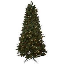 Bethlehem lighting christmas trees Pre Lit Picclick Bethlehem Lights Ashford Pine Christmas Tree
