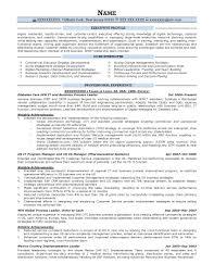 Executive Resume Samples Prime Leadership Sample Sevte