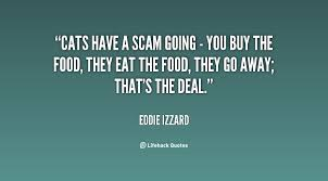 scams quotes