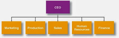 Organizational Chart Meaning Management Zone 101 Difference Between Organization