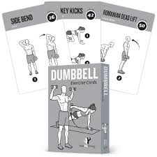 Bodybuilding Daily Routine Chart Exercise Cards Dumbbell Home Gym Strength Training Building Muscle Total Body Fitness Guide Workout Routines Bodybuilding Personal Trainer Large