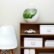 office desk fish tank. designers also try to improve aquarium systems make them lowmaintenance suit with the fastpaced lifestyles of fish owners office desk tank