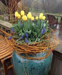 get creative container gardening advice in the new book the art of gardening garden bulbsgarden plantersplanting