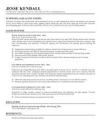 Resume Summary Examples Sales Examples Of Resumes