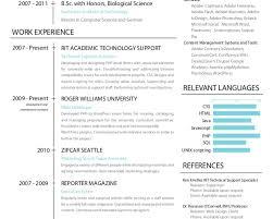 breakupus picturesque resume format for it professional resume breakupus great resume web development and design astounding liz shaw web developer and scenic resume