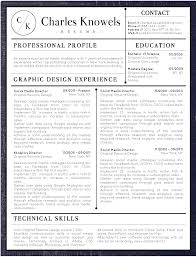 2019 Best Clean And Simple Resume Templates Top 5