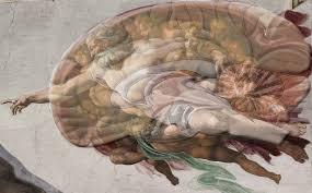 michelangelo painted a brain