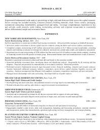 Equity Research Analyst Resume Sample Graphic Web Designer ...
