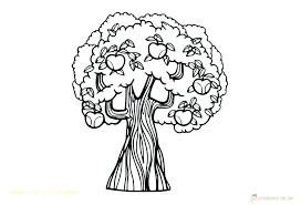 Apple Printable Coloring Pages Printable Apple Coloring Pages Apple
