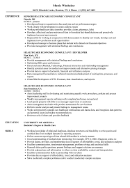 Sample Healthcare Consultant Resume Healthcare Economic Consultant Resume Samples Velvet Jobs 10
