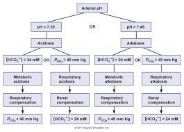 Acidosis Alkalosis Chart Pin On Nursing