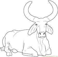Small Picture Beautiful Bull Coloring Page Free Bull Coloring Pages