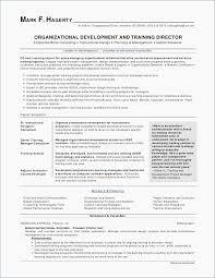 Professional Cv Template Beauteous Professional Cv Template Word Example Professional Resume Resume