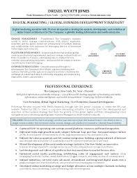 Marketing Resume Templates Gallery Of Digital Marketing Executive Resume Sample Marketing 81