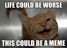 life could be worse this could be a meme - Cheer up Cat - quickmeme via Relatably.com