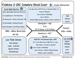 Normal Cbc Diagram Wiring Diagram Center