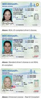 Policy 411 Haven Tribune On The Id Real Grand