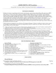 insurance manager resume example