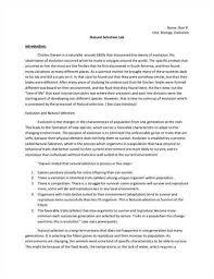 Lab Report Template       Free Word  PDF Document   Free   Premium     model resumed