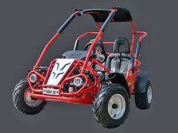 mudhead kids buggy 200cc go kart off road mudhead 200cc jpg