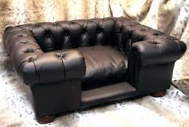designer dog bed furniture. Wonderful Bed Lets  With Designer Dog Bed Furniture
