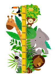 Height Chart Stock Illustrations 2 585 Height Chart Stock